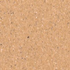 Armstrong Accolade Foothold Capricorn Beige 1.83m Wide