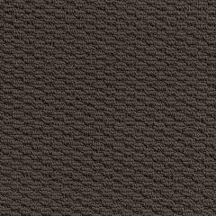 Quest Carpet Kingscliff Campese