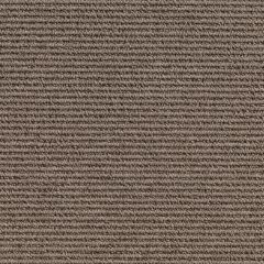 Quest Carpet North South Latte