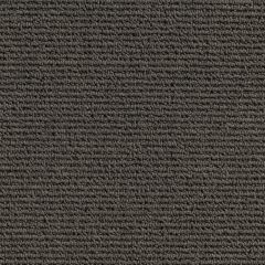 Quest Carpet North South Taupe