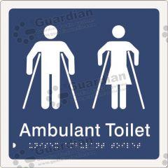 Ambulant Toilet Blue