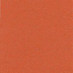 Gerflor Tarasafe Standard Flame 2m Wide
