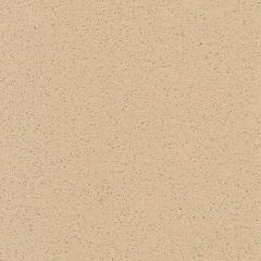 Gerflor Tarasafe Standard Dune 2m Wide