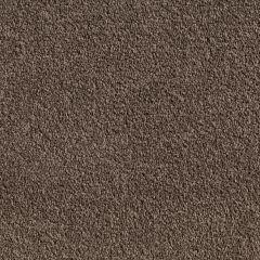 Quest Carpet Atlantic Dark Cedar