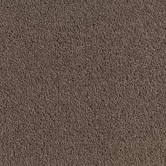 Quest Carpet Atlantic Wiemaraner