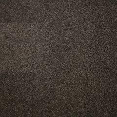 Quest Carpet Crossley Twist Winding Path