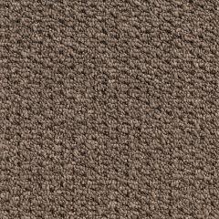 Quest Carpet Flashtone Bounce