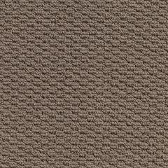 Quest Carpet Kingscliff Latte