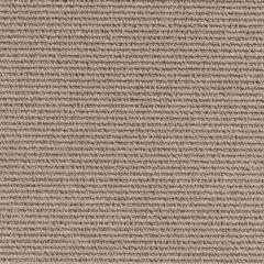 Quest Carpet North South Almond