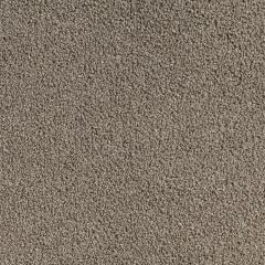 Quest Carpet Venetian Canvas