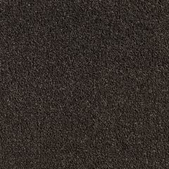 Quest Carpet Venetian Midas Touch