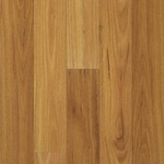 Proline Australian Select 1 Strip Click Blackbutt 1214mm x 142mm x 8mm
