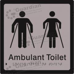 Ambulant Toilet Silver