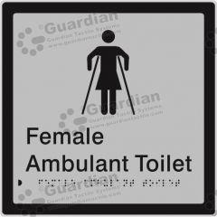 Female Ambulant Toilet Silver