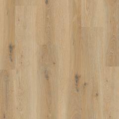Premium Floors Titan Vinyl Glue Country Oak 185mm x 1505mm x 2mm