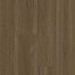 Premium Floors Titan Rigid XXL Spotted Gum 1800mm x 225mm x 6mm